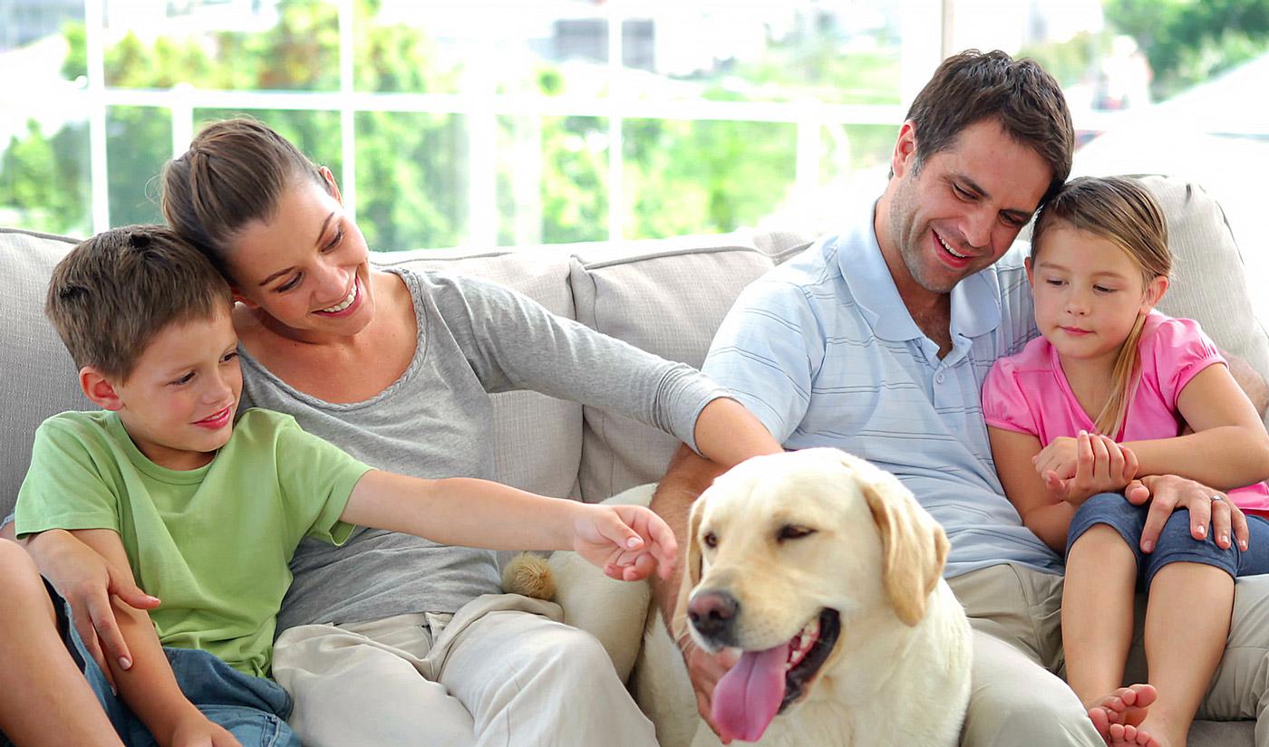 дружить семьями знакомств
